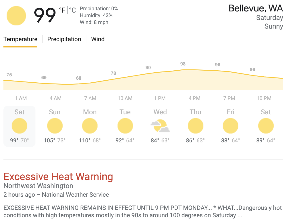 stay cool during Seattle bellevue heat wave